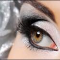 silver_eye_web208