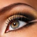brown-makeup (15)