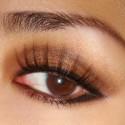 brown-makeup (25)