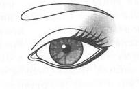 узкопосаженные глаза